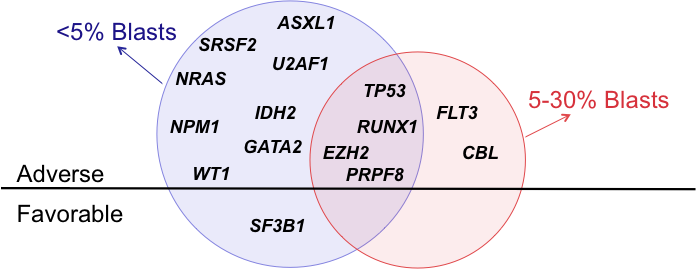 figure 1 genes frequently mutated